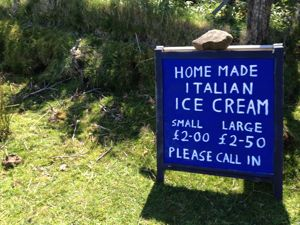 A blue sign in green field, home made icecream