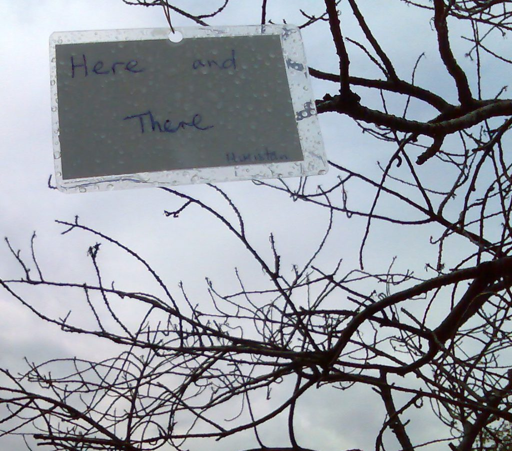 Here and there. A refugee poem flutters on the branch of a dead tree