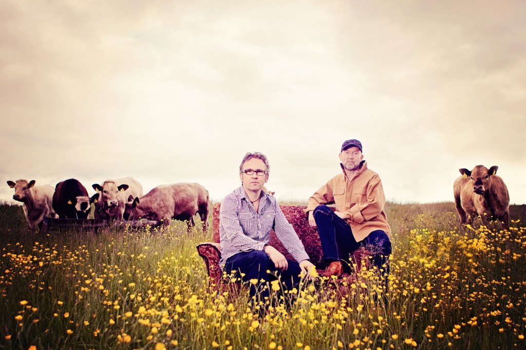 Leo and Anto on a sofa in a field full of buttercups and (er) cattle